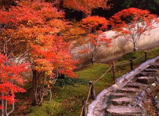 024糸魚川.jpg